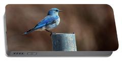 Mountain Bluebird Portable Battery Charger