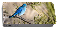 Mountain Bluebird In A Pine Portable Battery Charger
