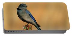 Mountain Bluebird Portable Battery Charger by Paul Marto