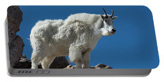 Portable Battery Charger featuring the photograph Mountain Goat 2 by Gary Lengyel