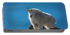 Portable Battery Charger featuring the photograph Mountain Goat 3 by Gary Lengyel