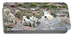 Portable Battery Charger featuring the photograph Mountain Goat Family Panorama by Scott Mahon