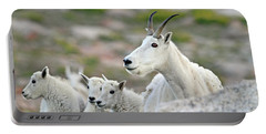 Portable Battery Charger featuring the photograph Mountain Goat Family by Scott Mahon