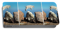 Mountain Goat Leap-frog Triptych Portable Battery Charger