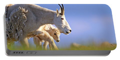 Portable Battery Charger featuring the photograph Mountain Goat Light by Scott Mahon