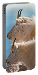 Portable Battery Charger featuring the photograph Mountain Goats by Gary Lengyel