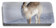 Mountain Hare In The Snow - Lepus Timidus  #2 Portable Battery Charger