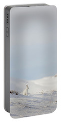 Mountain Hare On Hillside Portable Battery Charger
