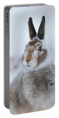 Mountain Hare - Scotland Portable Battery Charger