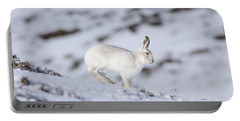 Mountain Hare - Scottish Highlands  #12 Portable Battery Charger