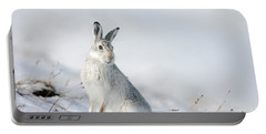 Mountain Hare Sitting In Snow Portable Battery Charger
