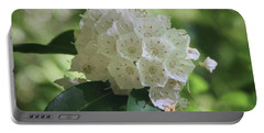 Portable Battery Charger featuring the photograph Mountain Laurel - Spring by Nikolyn McDonald