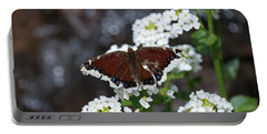Mourning Cloak Portable Battery Charger by Jason Coward