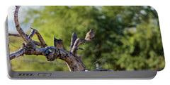 Mourning Dove In Old Tree Portable Battery Charger