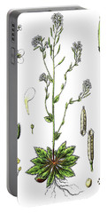 Mouse-ear Cress Or Arabidopsis Portable Battery Charger