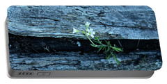 Portable Battery Charger featuring the photograph Mouse Eared Chickweed by Ann E Robson