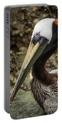 Mr. Cool Wildlife Art By Kaylyn Franks Portable Battery Charger