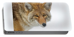 Mr. Coyote Portable Battery Charger