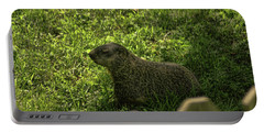Mr Woodchuck Portable Battery Charger