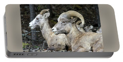 Mt Sheep  Portable Battery Charger