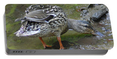 Portable Battery Charger featuring the photograph Muddy Mallard by Kathy Kelly