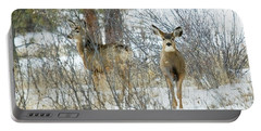 Mule Deer Does In Snow Portable Battery Charger