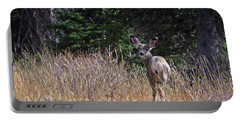 Mule Deer In Utah Portable Battery Charger by Cindy Murphy - NightVisions