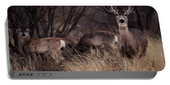 Mule Deer Mama And Twins Portable Battery Charger