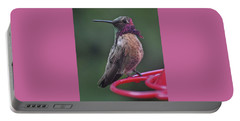 Multicolored Male Anna's Hummingbird Portable Battery Charger