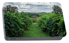 Portable Battery Charger featuring the photograph Muscadine View by Paul Mashburn
