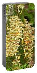 Portable Battery Charger featuring the photograph Mushroom Colony Photo Art by Sharon Talson