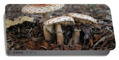 Portable Battery Charger featuring the photograph Mushroom Trio Macrolepiota Procera by Frank Wilson