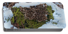 Mushrooms And Moss Portable Battery Charger by Michael Peychich