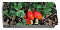 Portable Battery Charger featuring the photograph Mushrooms And Thorns by Sheila Brown