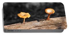 Mushrooms On A Branch Portable Battery Charger