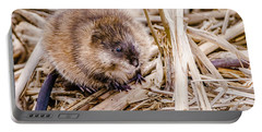 Portable Battery Charger featuring the photograph Muskrat Ball by Steven Santamour