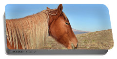 Mustang Mare Portable Battery Charger