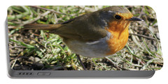 My Robin Friend 1 Portable Battery Charger