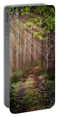 Portable Battery Charger featuring the photograph Mystery At Dawn by Debra and Dave Vanderlaan