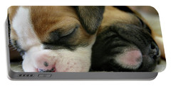 Nap Time Portable Battery Charger