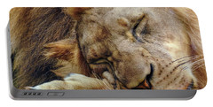 Napping Portable Battery Charger