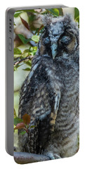 Portable Battery Charger featuring the photograph Napping Long-eared Owlet by Yeates Photography