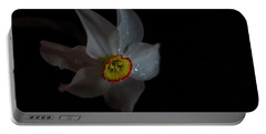 Portable Battery Charger featuring the photograph Narcissus by Susan Capuano