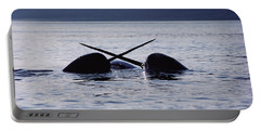 Narwhal Males Sparring Baffin Island Portable Battery Charger