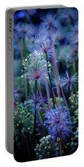 Natural Fireworks 4791 H_2 Portable Battery Charger