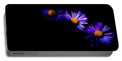 Natural Fireworks Portable Battery Charger by Timothy Hack