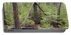 Natural Peace In The Woods Portable Battery Charger