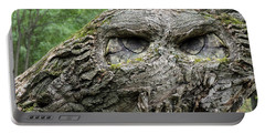 Portable Battery Charger featuring the photograph Nature And Fantasy by Vladimir Kholostykh