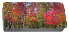 Portable Battery Charger featuring the photograph Natures Autumn Palette by David Patterson