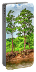 Nature's Electricity Portable Battery Charger by Robert FERD Frank